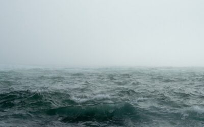 Two Thoughts for Turbulent Times